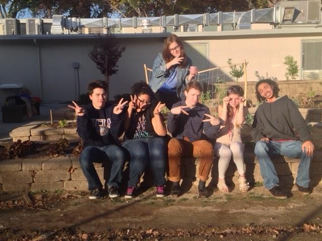 Image of Met senior wins $500 grant to improve school garden