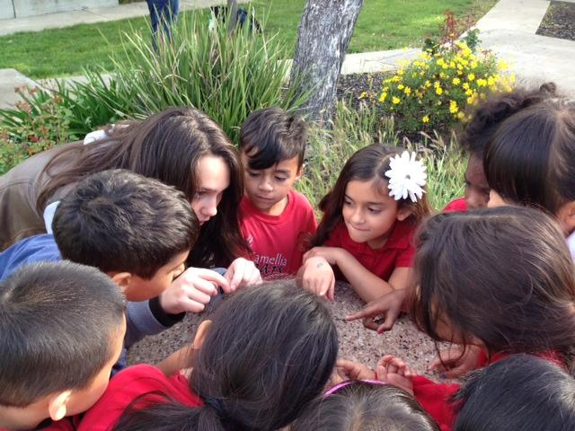 Image of Will C. Wood students teach others about environmental stewardship