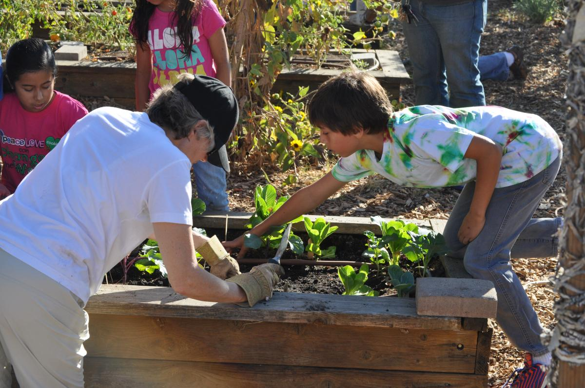 Image of SCUSD turns out for Green Apple Day of Service