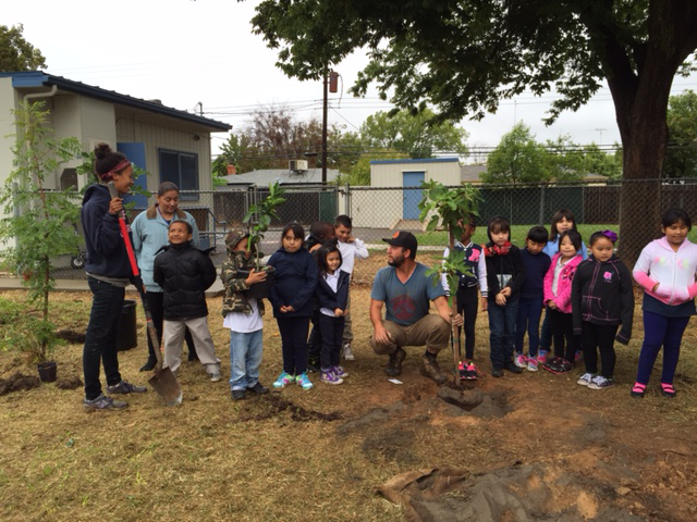 Image of Helping kids branch out: Pacific Elementary gets an orchard