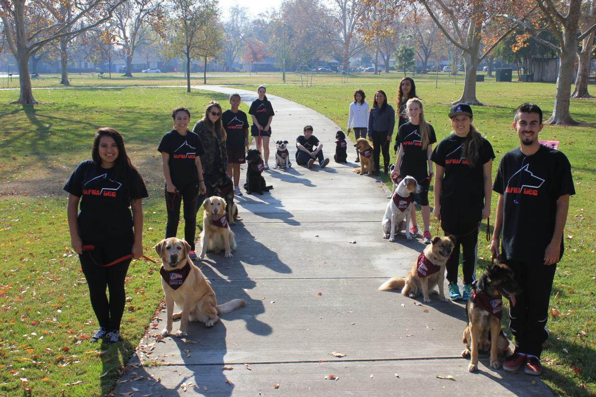 Image of West Campus students train service dogs to help veterans